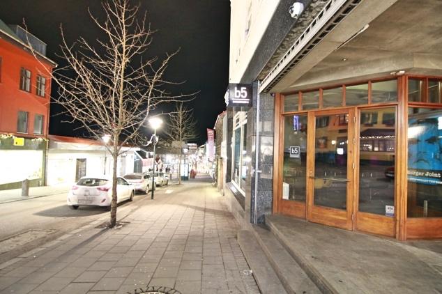 Reykjavik-Iceland-City-Center11